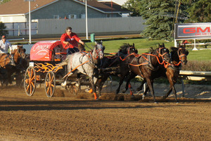 Horse Carriage race