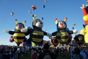 Bumble Bee Hot air balloons